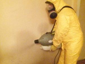 Уничтожение тараканов в Москве – Обработка от тараканов СЭС